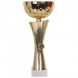 Puchar Gt 9254