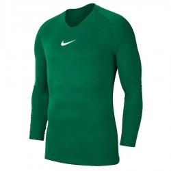 Koszulka Nike Y NK Dry Park 1STYR JSY LS AV2611 302