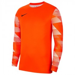 Koszulka Nike Y Park IV GK Boys CJ6072 819