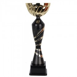 Puchar Tryumf 7222