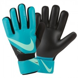 Rękawice Nike Goalkeeper Match CQ7799 356