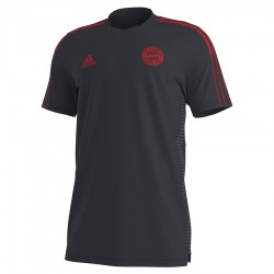 Koszulka adidas FC Bayern Training Jersey GR0658